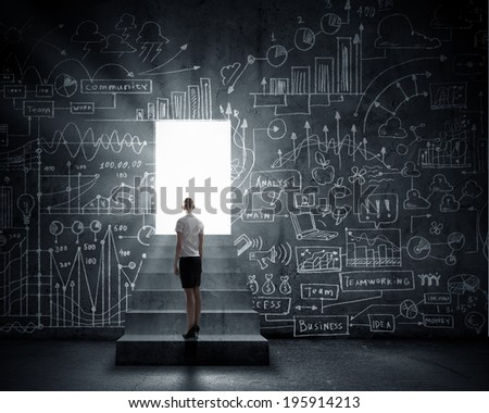Rear view of businesswoman looking at opened door - stock photo
