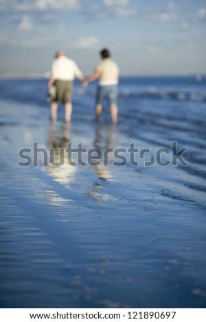 Rear view of senior Caucasian couple on beach - stock photo