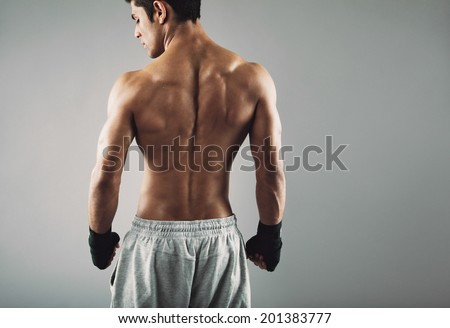 Rear view of strong young male boxer. Fitness male model wearing boxing gloves standing on grey background. - stock photo