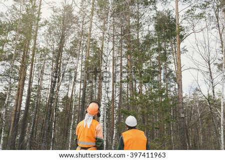 Rear view, two lumberjack looking at the forest - stock photo