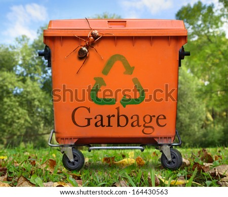 Recycled sign on garbage bin and large ant - stock photo