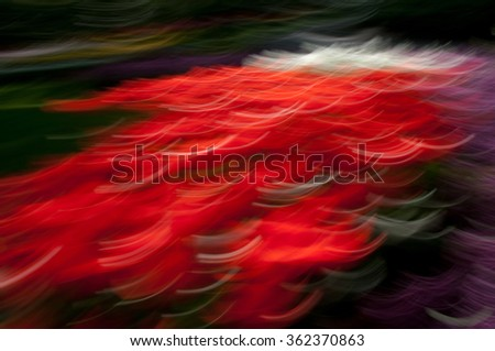 Red abstract flowers background - stock photo