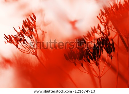 red abstract natural background of grass and red flowers in full bloom taking all the space image - stock photo