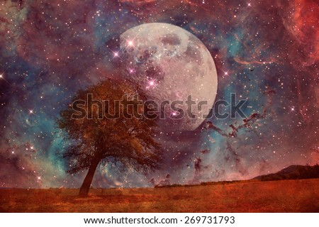 red alien landscape with alone tree over the moon night sky- elements of this image are furnished by NASA - stock photo