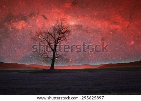 red alien landscape with alone tree silhouette in purple field- elements of this image are furnished by NASA - stock photo