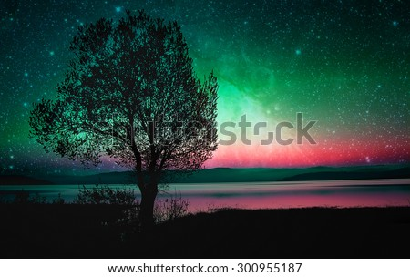 red alien landscape with alone tree silhouette near lake- elements of this image are furnished by NASA - stock photo