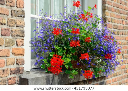 Red and blue blossoming plants in a flower box in the window sill of a historic house. - stock photo