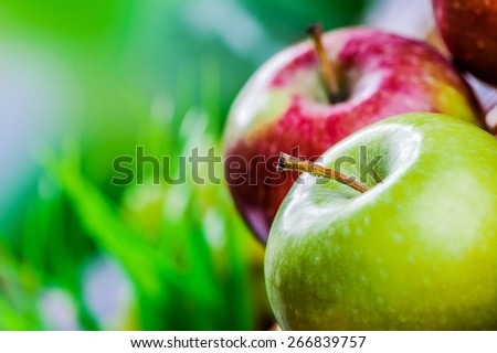 Red and green apple in basket close up. - stock photo