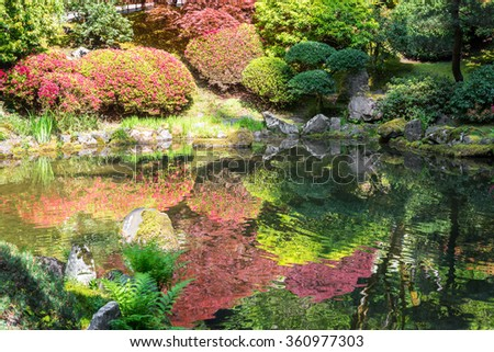 Red and green plants reflected in a Japanese Garden in Portland, Oregon - stock photo
