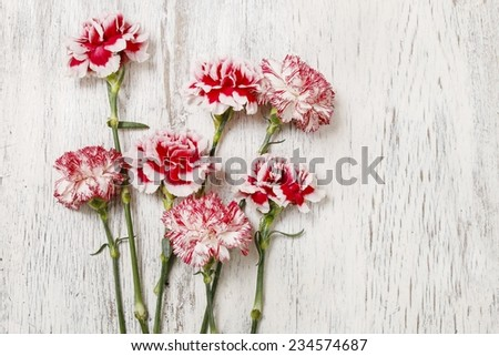 Red and white carnation flowers on wooden background - stock photo