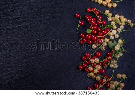 red and white currant on black background - stock photo