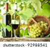 Red and white wine bottles, two glasses and bunch of grapes on old wooden table against vineyard - stock photo
