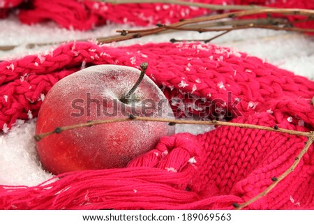 Red apple in snow close up - stock photo