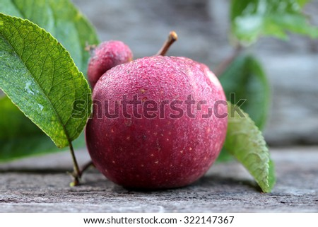 red apple on wood background - stock photo