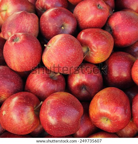 red  apples as background - stock photo