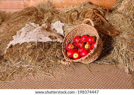 Red apples in the basket on the hay - stock photo