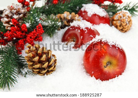 Red apples with fir branches in snow close up - stock photo