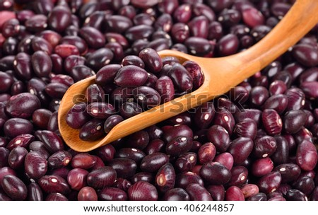 Red bean isolated on white background - stock photo