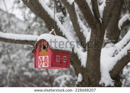 Red bird house hanging outdoors in winter on tree covered with snow - stock photo