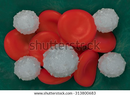red blood cells,activated platelet and white blood cells microscopic photos - stock photo
