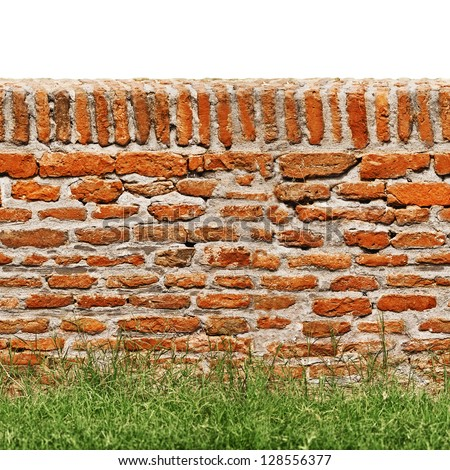 Red brick wall with green grass on front and isolated on white on the top. - stock photo