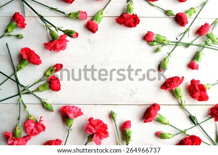 Red carnations frame.Image of Mothers day - stock photo