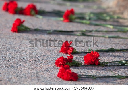 Red carnations lie on granite slab of monument to soldiers - stock photo