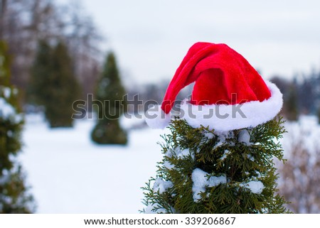 Red christmas hat on branch in winter park outdoors - stock photo