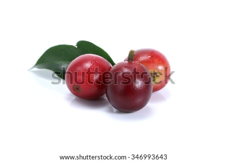 Red coffee beans isolated on white background - stock photo