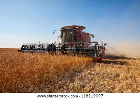 Red combine harvester working a flax field - stock photo