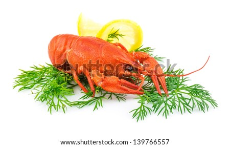 Red cooked lobster with dill and lemon isolated on white background - stock photo