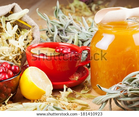 red cranberries, jar with honey, fruit tea cup, healing herbs and lemon - stock photo