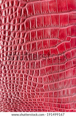 red crocodile leather texture  background - stock photo