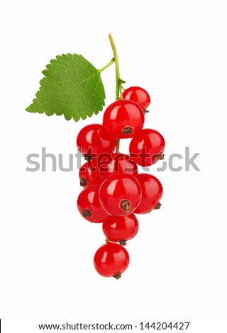 Red Currant with leaf, isolated on white background - stock photo