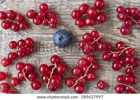 Red currants and a blueberry on the wooden table bakground  - stock photo