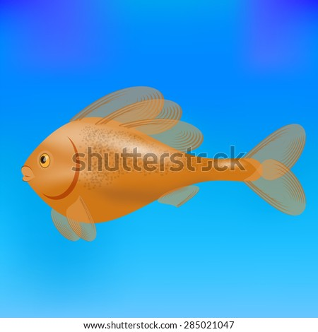 Red Cute Sea Fish Isolated on Blue Water Background. - stock photo