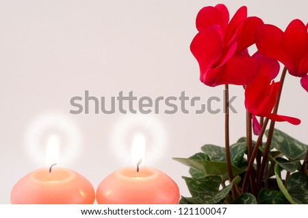 Red cyclamen flowers and candle light on gray - stock photo