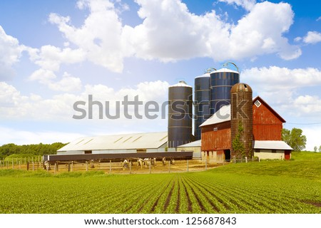 Red Dairy Farm With Sunny Sky - stock photo