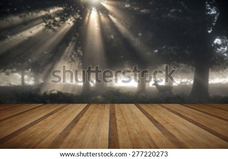 Red deer stag illuminated by sun beams through forest landscape on foggy Autumn Fall morning with wooden planks floor - stock photo