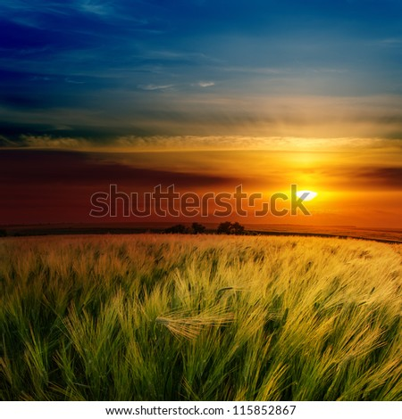 red dramatic sunset over green field - stock photo