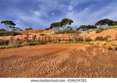 red draught arid soil of outback in Western Australia. Floor of dry billabong surrounded by eucalyptus trees and bush under blue sky and hot sun light. - stock photo