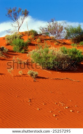 Red dune of the Red center, Australia - stock photo
