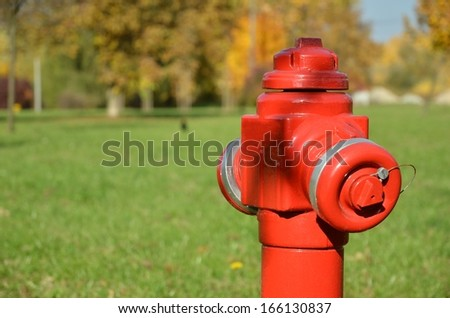 Red Fire Hydrant on green field - stock photo