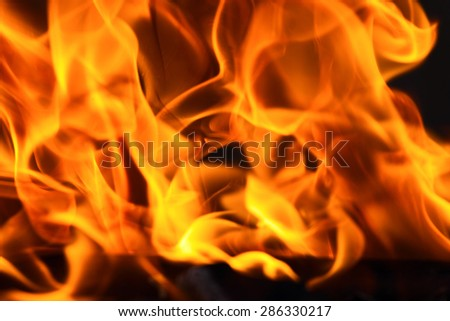 Red flame isolated on black background - stock photo