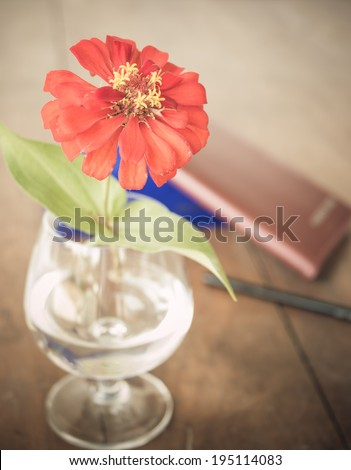 red flower in glass of water on blown desk - stock photo