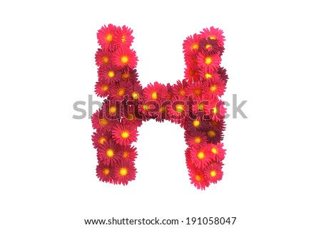 Red flower letter H isolated on white backround - stock photo