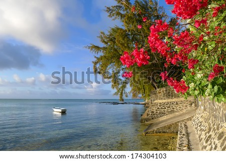 Red flowers and boat on sea on tropical coast of Mauritius island - stock photo