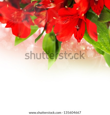red flowers background - stock photo