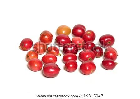 Red fresh coffee beans on white - stock photo