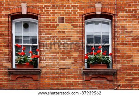 Red Geranium Window Box - stock photo